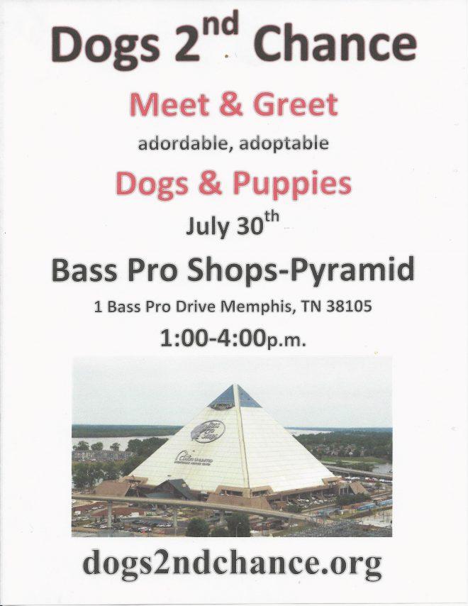 Meet dogs at Bass pro Shops!