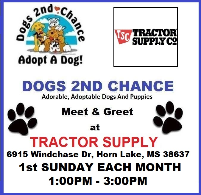 SUNDAY JAN 5, 2020: ADOPTABLE DOG MEET & GREET AT TRACTOR SUPPLY, 6915 WINDCHASE DR., HORN LAKE, MS 38637 1ST SUNDAY EACH MONTH 1-3PM