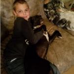 Adopt Angel Dog 2