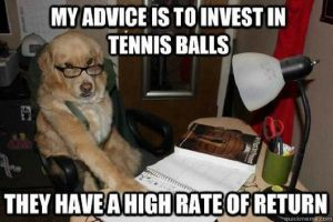 best-of-financial-advice-dog-funny-photos-meme1