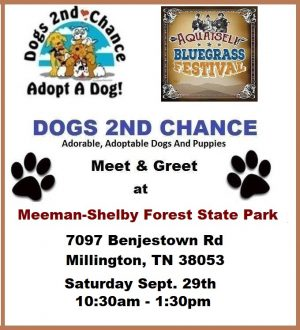 Meet Dogs for Adoption at the Bluegrass Festival Saturday September 29th 1030am-1:30am