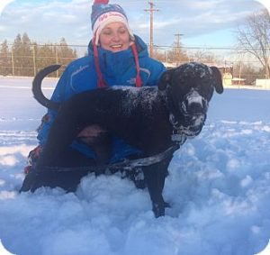 Black Lab Puppy Chowder playing with foster mom in the snow.