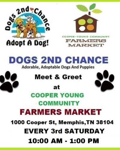 Meet adoptable dogs at Cooper Young every 3rd Saturday 10am to 1pm