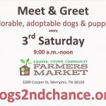 Meet Adoptable Dogs! Cooper Young Community Farmers Market