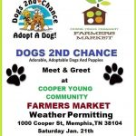 adopt dog meet and greet