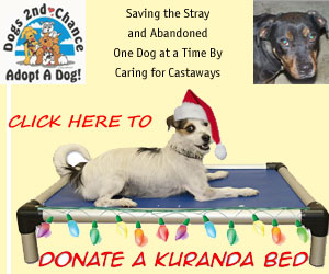 donate-kuranda-bed-xmas-300