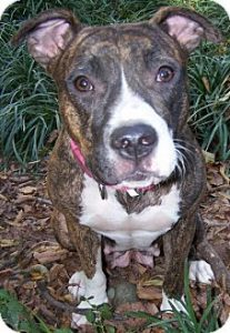 Hannah Rose wants to live in a warm loving home