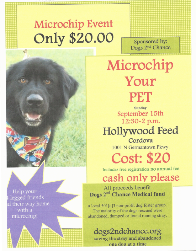 microchip event hollywood feed