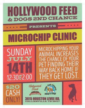 Microchip dogs clinic