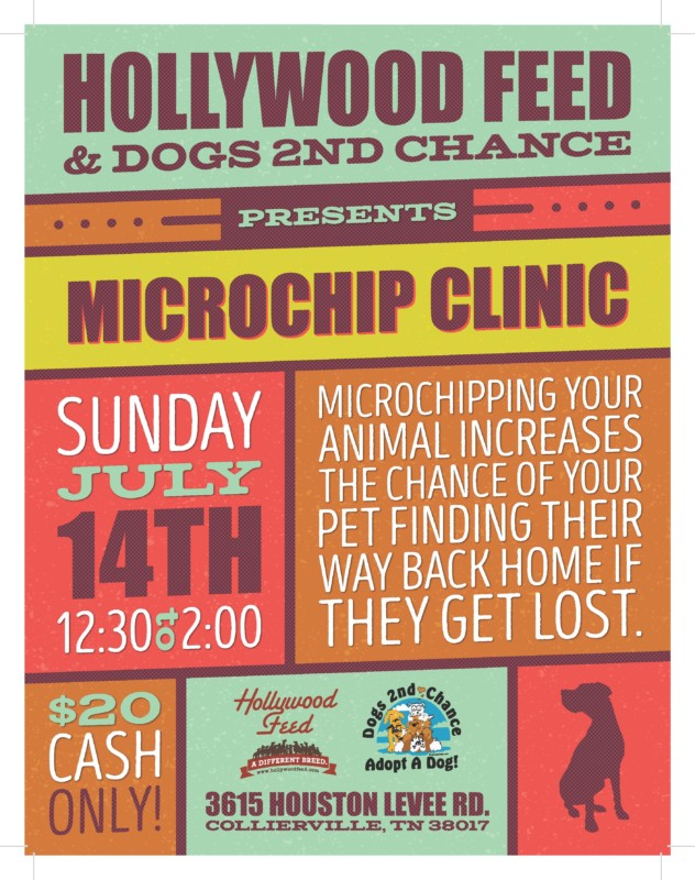 Microchip dogs clinic