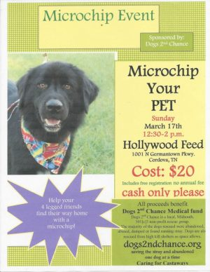 Microchip Event March 17 2019