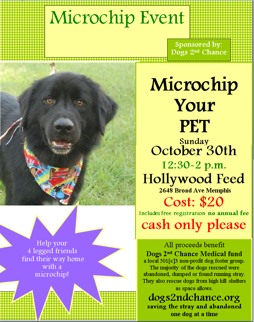 Microchip Your Pet