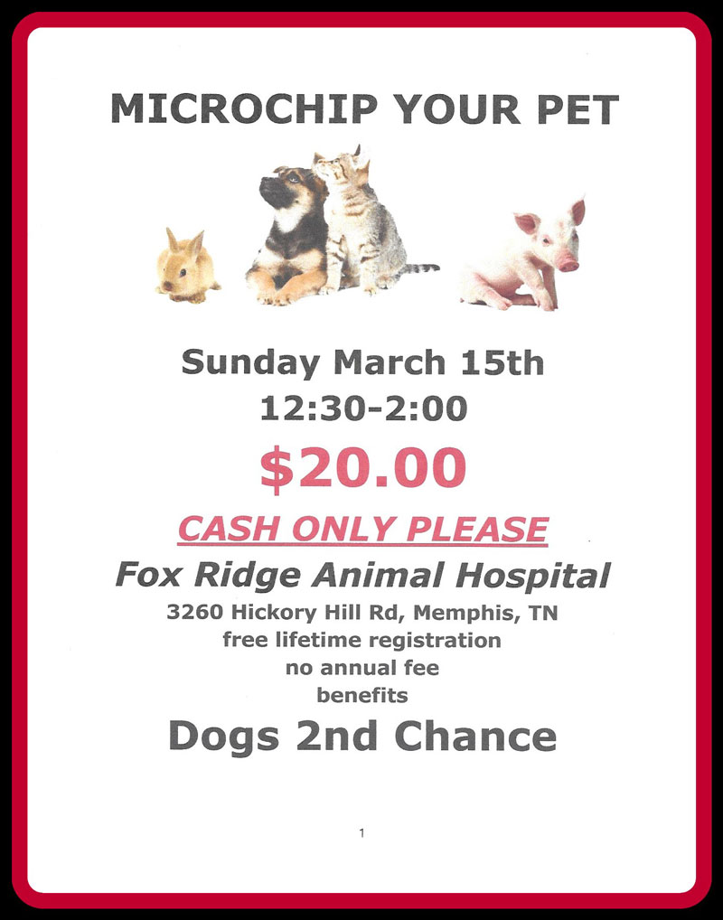 Microchip Clinic Sun. Mar 15