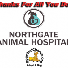 Thank you Northgate Animal Hospital and Dr. Tracey Gullett