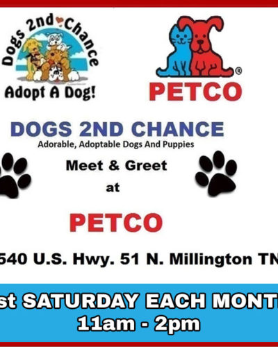 Meet adoptable dogs at Petco, 8540 US Hwy. 51, N. Millington, TN, the 1st saturday of each month, 11am to 2pm