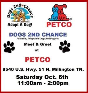 adopt dogs petco