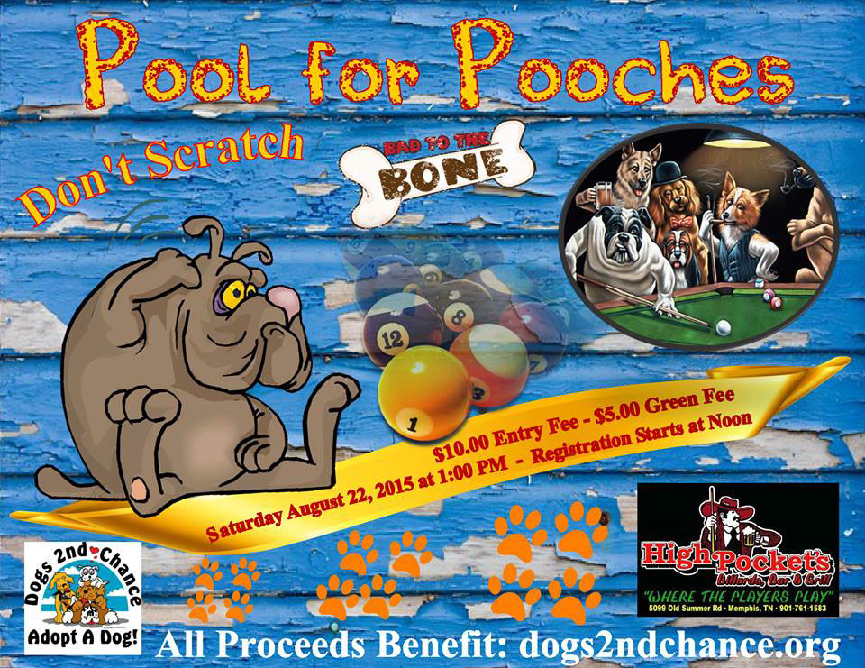 Pool for Pooches August 22 2015