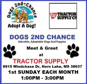 Tractor Supply, 6915 Windchase Dr., Horn Lake, MS 38637