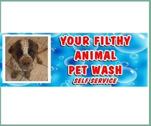 your filthy animal wash
